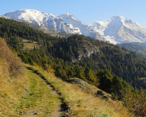 Escursioni a piedi o in mountain-bike (4)