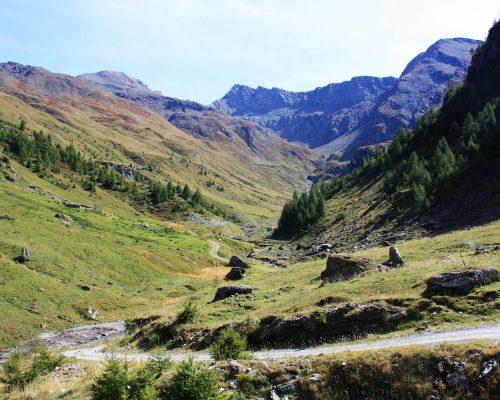 Parco Naturale Val Troncea (5)
