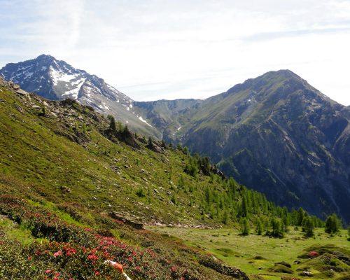 Parco Naturale Val Troncea